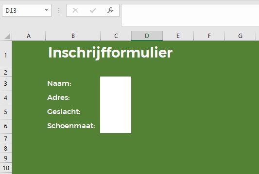 Excel als formulier met beveiligde cellen